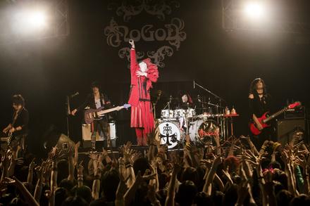 �wNoGoD TOUR -2016-�uRenovation�v�x