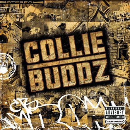 Collie Buddz (okmusic UP's)