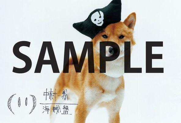 ポストカード(『海賊盤】) (okmusic UP's)