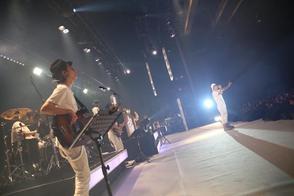 2月27日@豊洲ピット (okmusic UP's)