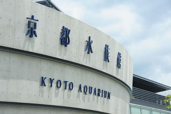 京都水族館 (okmusic UP's)