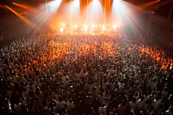 11月04日(水)@Zepp Tokyo(RADWIMPS) (okmusic UP's)