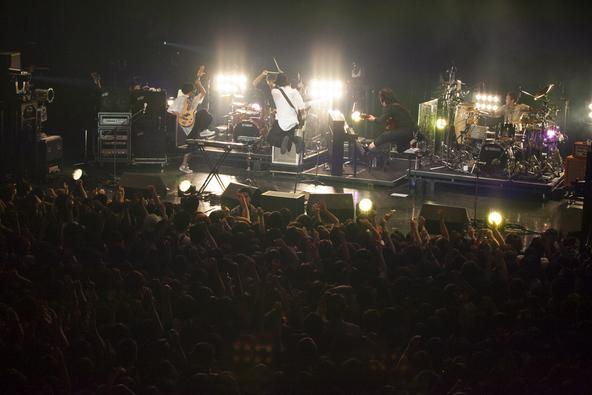 11月12日(木)@Zepp Sapporo(RADWIMPS) (okmusic UP's)