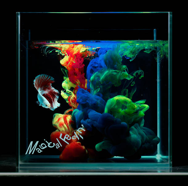 シングル「Magical Feelin'」【通常盤】(CD)