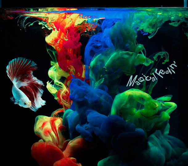 シングル「Magical Feelin'」【完全生産限定盤】