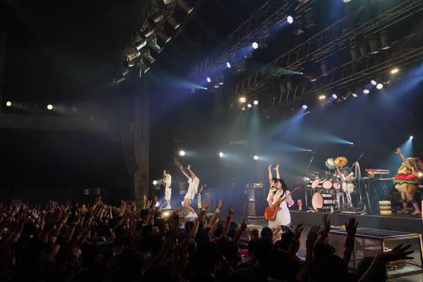 7月29日(日)@『DOLL$ FESTA』(Gacharic Spin) photo by 藤木裕之