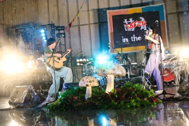 【さくらしめじ ライヴレポート】 『菌育in the 家(はうす) ファイナル 真夏の星空ピクニック』 2018年7月28日  at 日比谷野外大音楽堂