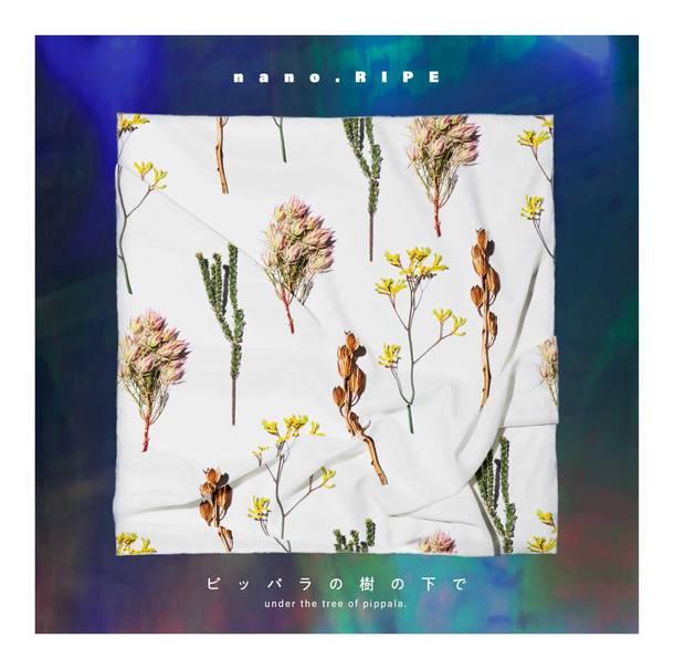 アルバム『ピッパラの樹の下で』【初回限定盤(2CD)】