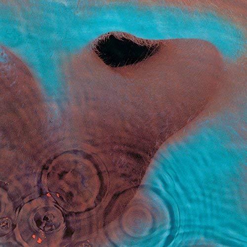 『Meddle』('71)/Pink Floyd