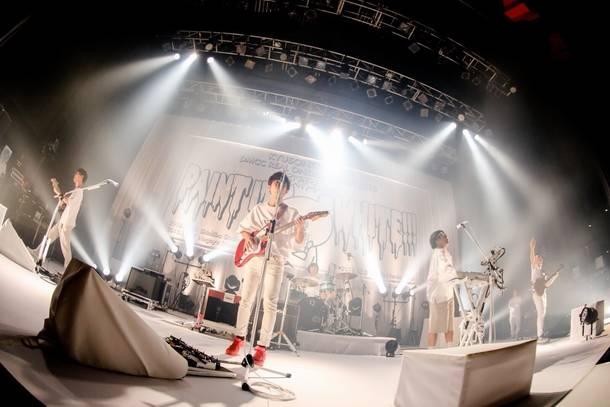 【キュウソネコカミ  ライヴレポート】 『DMCC REAL ONEMAN TOUR 2018  -EXTRA!!- ~PAINT IT WHITE!!!~』 2018年11月21日  at 新木場STUDIO COAST