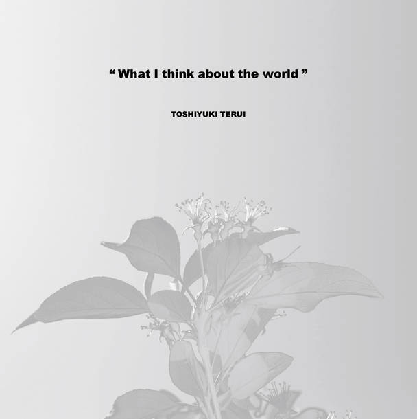 [LP] 照井利幸『What I think about the world』