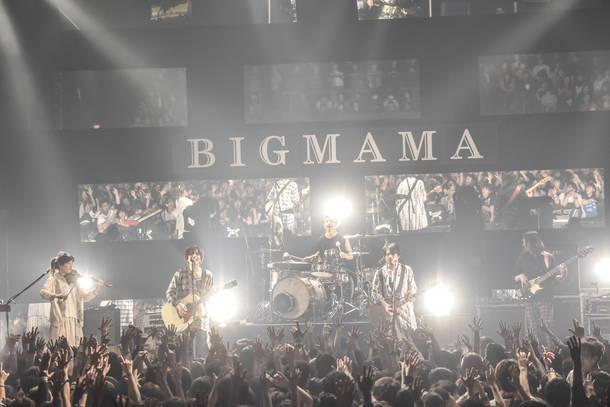 """【BIGMAMA ライヴレポート】 『major 1st album """"-11°C""""  リリースツアー「+11°C」』 2018年12月25日  at マイナビBLITZ赤坂"""
