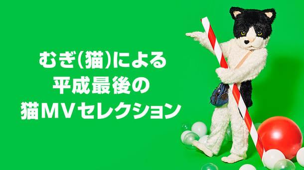 『むぎ(猫)による平成最後の猫MVセレクション』