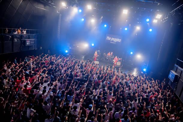 6月15日@マイナビBLITZ赤坂 photo by Jumpei Yamada