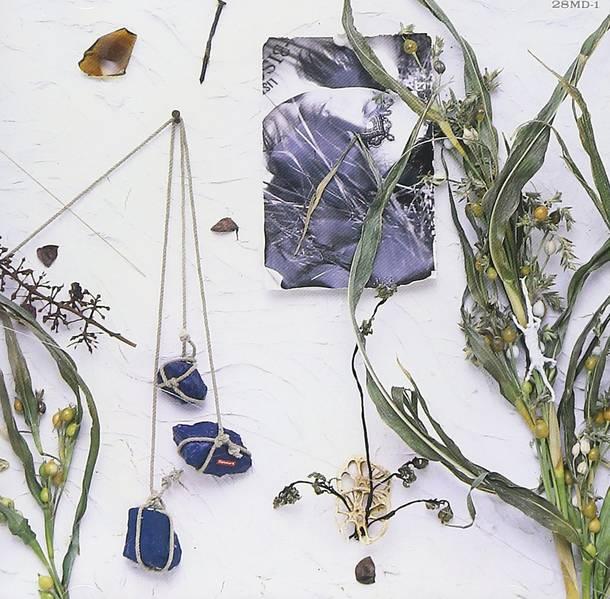 「夏が来て僕等」収録アルバム『夏のぬけがら』/真島昌利