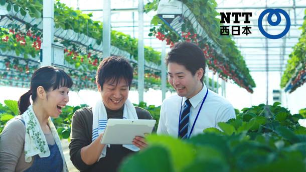 NTT西日本 企業広告「with you 篇」CM