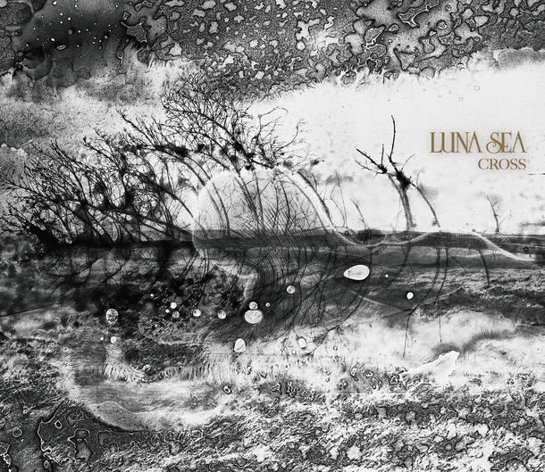 アルバム『CROSS』【初回限定盤A】(CD+DVD)【初回限定盤B】(2CD+DVD)