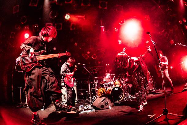 【嘘とカメレオン ライヴレポート】『2MAN TOUR -へのへのもへじ-』 2020年2月16日  at 渋谷CLUB QUATTRO