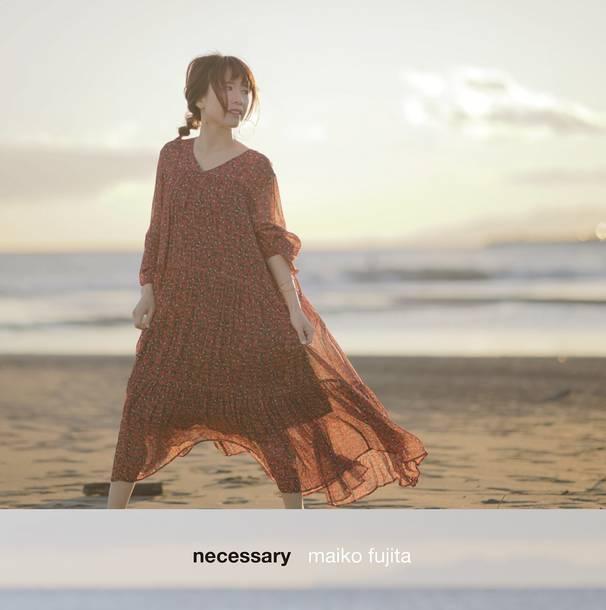 アルバム『necessary』【完全限定生産盤】(CD+DVD+グッズ)