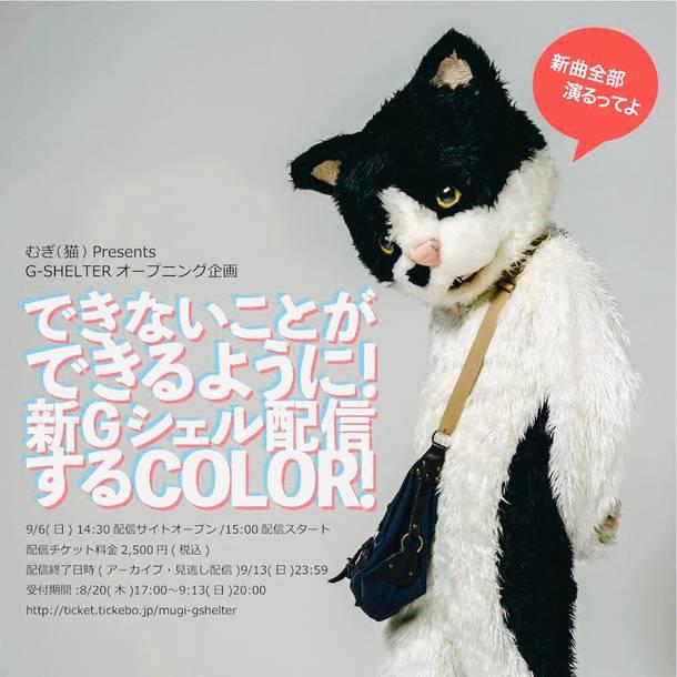 むぎ(猫) presents G-SHELTER オープニング企画『できないことができるように!新Gシェル配信するCOLOR!』