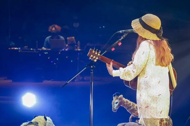 コレサワ:9月22日(火・祝)生配信弾語りライブ「君が帰ったあとには」/Photo by 小坂茂雄