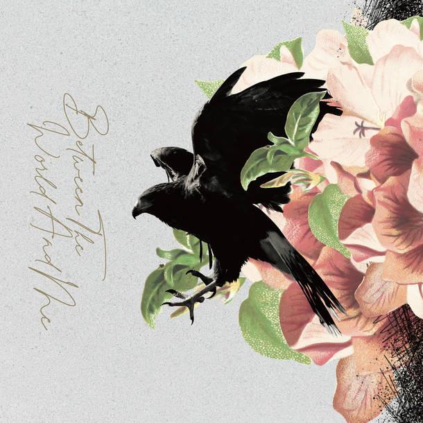 アルバム『Between The World and Me』【完全生産限定盤-LP SIZE BOX-】 (CD+Blu-ray+写真集)
