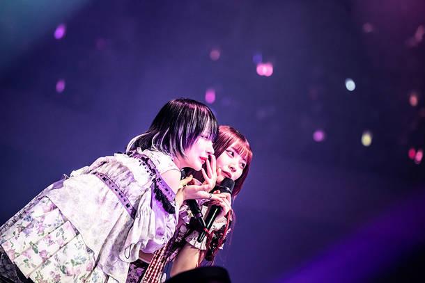 2021年2月8日 at 日本武道館 (Photo by Masayo)
