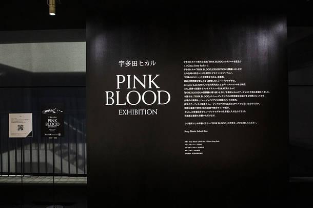 『宇多田ヒカル「PINK BLOOD」EXHIBITION』 photo by キセキミチコ