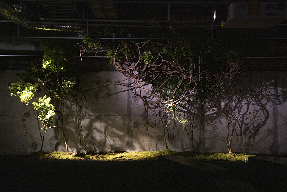 TAKAY氏による園内の植栽装飾