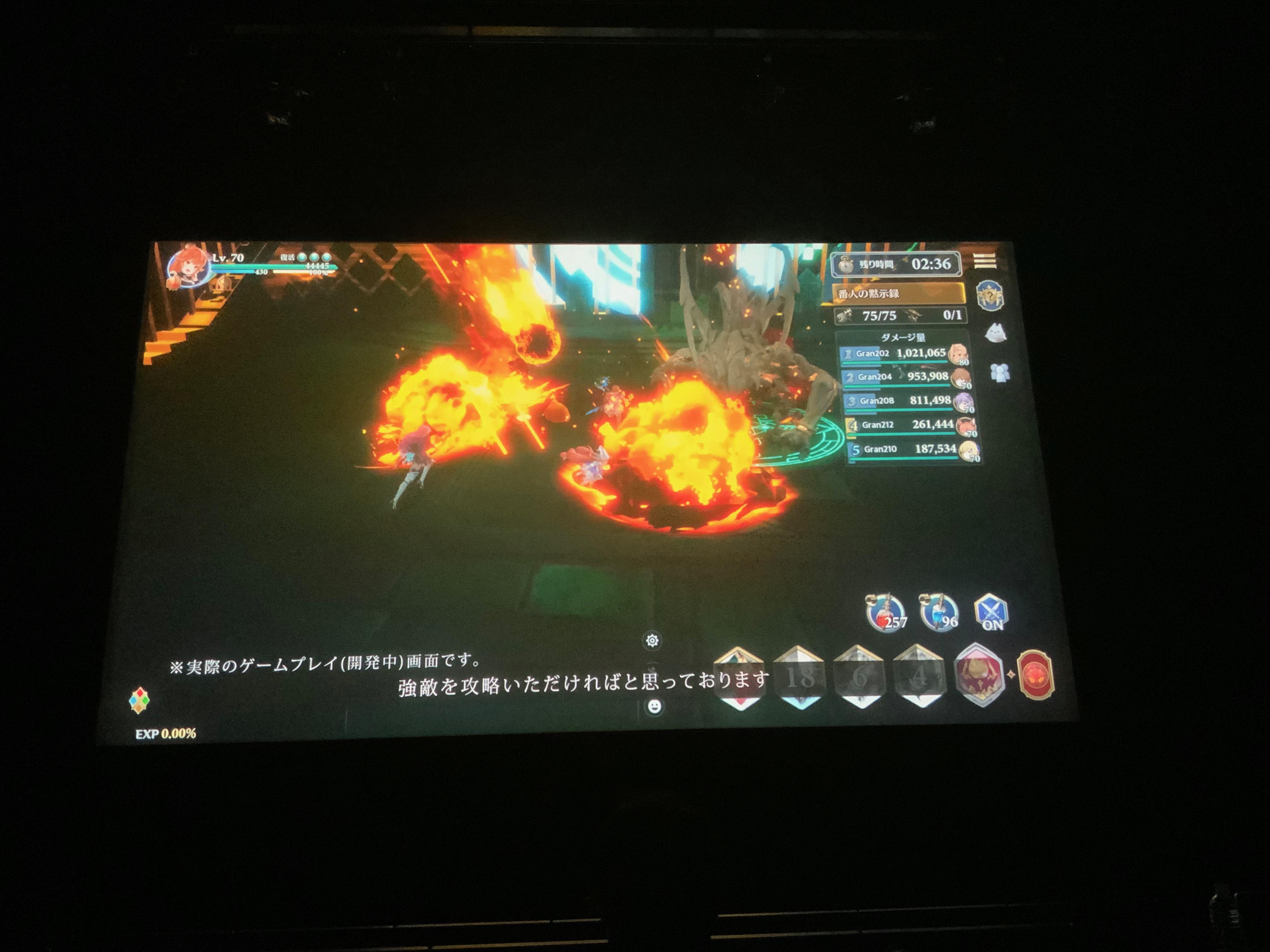 『グランサガ』ショーケースライブゲーム内のバトルシーン