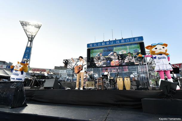 『秦 基博 10th Anniversary LIVE AT 横浜スタジアム』【一部】 photo by Kayoko Yamamoto