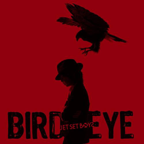 アルバム『BIRD EYE』