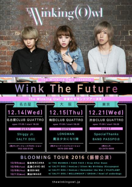 主催イベント『Wink The Future 2016』フライヤー