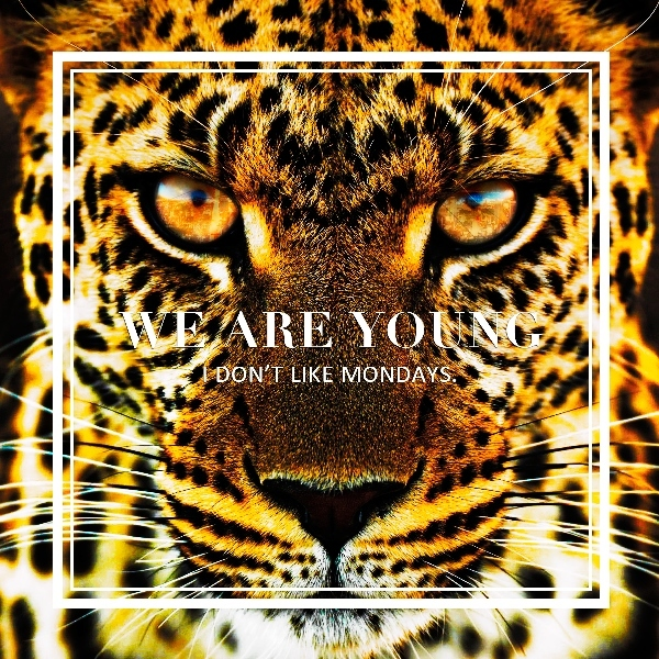 EP「WE ARE YOUNG / Super Special」