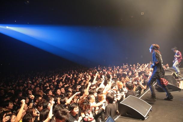 11月19日@東京・Zepp DiverCity