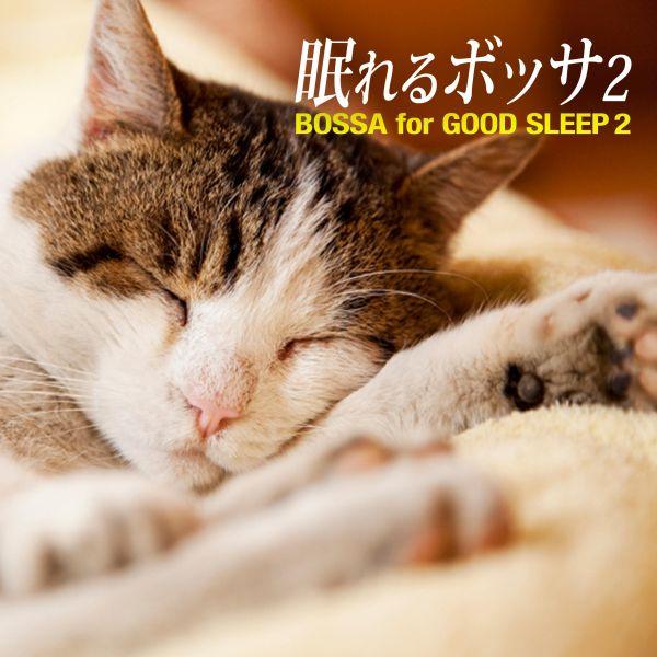 眠れるボッザ2