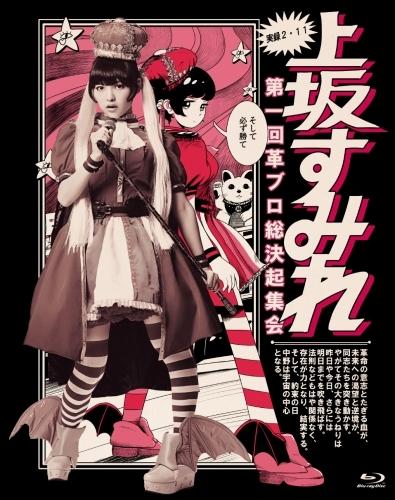「実録・2.11 第一回革ブロ総決起集会」Blu-rayジャケット画像
