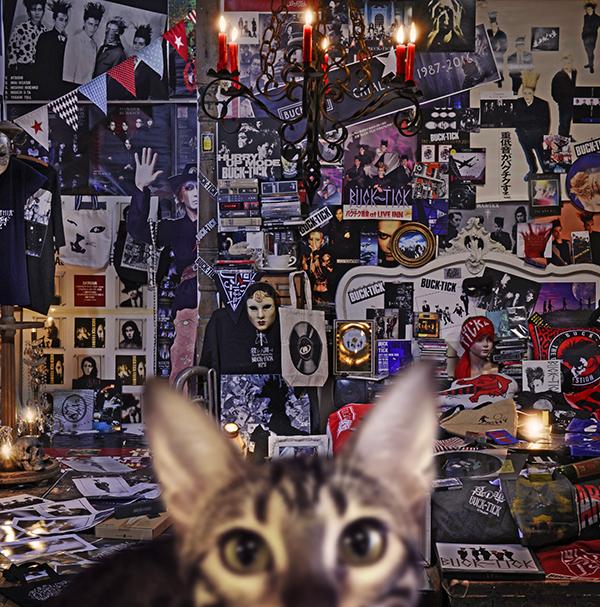 アルバム『CATALOGUE 1987-2016』