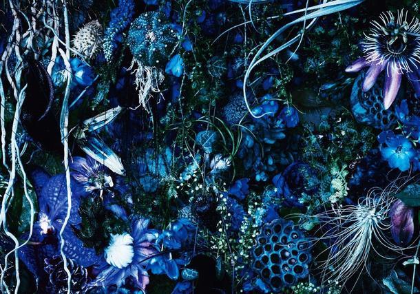 アルバム『ONENESS M』【初回限定盤】(2CD(SHM-CD)+Photo Book+三方背ケース)