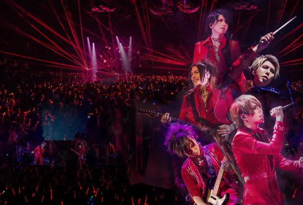 "DVD&Blu-ray『13TH ANNIVERSARY LIVE ""ALICE IN WONDEЯ LAND"