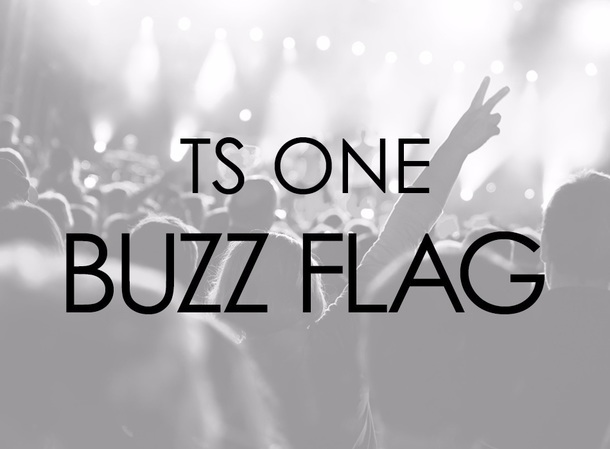 TS ONE『BUZZ FLAG』