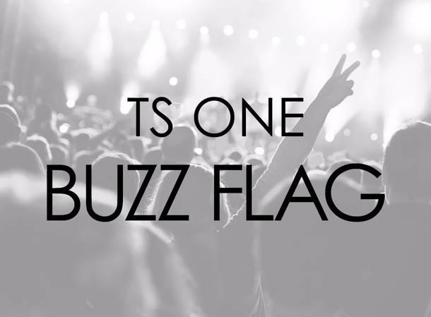 TS ONE『BUZZ FLAG』
