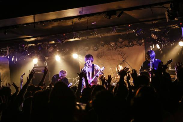 NoisyCell ライブ写真