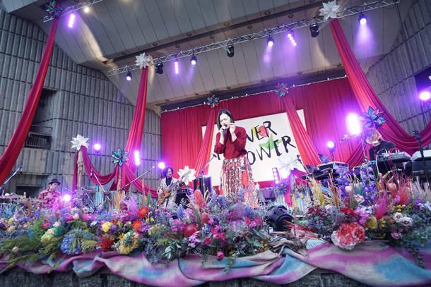 【FLOWER FLOWER ライヴレポート】 『インコのhave a nice dayツアー』2018年4月1日 at 日比谷野外大音楽堂