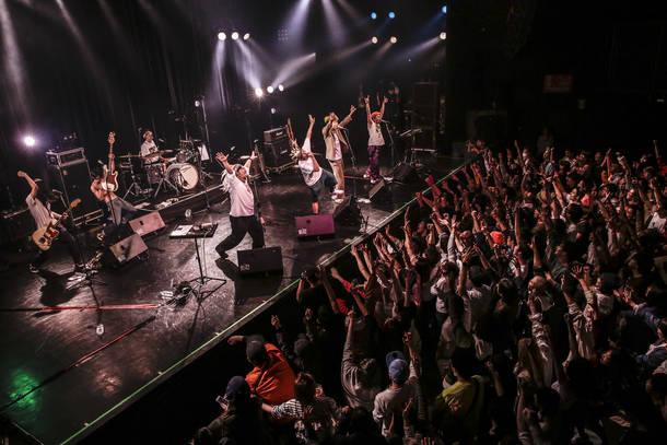 【どついたるねん ライヴレポート】『どついたるねんワンマンライブ  Let's Go Party!! 4649!』  2018年4月8日 at マイナビBLITZ赤坂