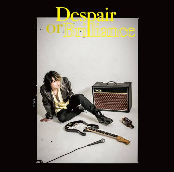アルバム『Despair or Brilliance』