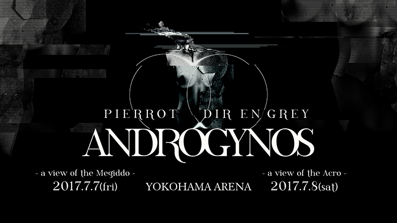 『ANDROGYNOS』バナー画像