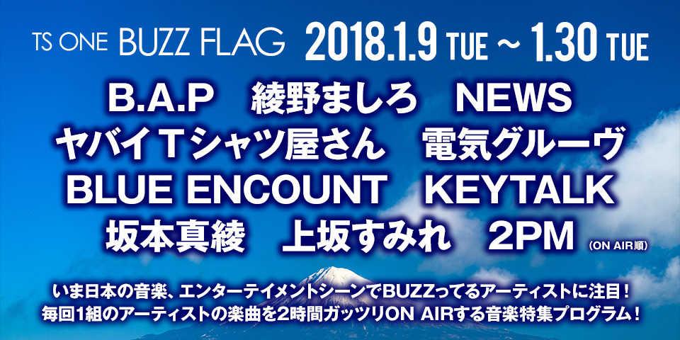 TS ONE 『BUZZ FLAG』 2018年1月放映アーティスト