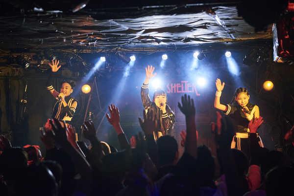 2月24日(土)@下北沢SHELTER photo by 杉野晃一  (okmusic UP's)