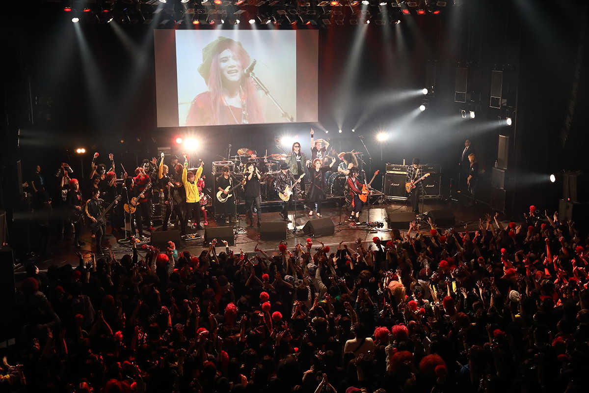 12月8日(日)@川崎CLUB CITTA' photo by 上野宏幸/堅田ひとみ(nonfix creative)